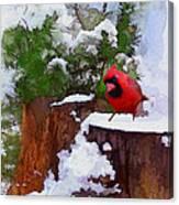 Christmas Guest Canvas Print