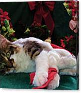 Christmas Joy W Kitty Cat - Kitten W Large Eyes Daydreaming About Xmas Gifts - Framed W Poinsettias Canvas Print