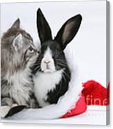 Christmas Kitten And Rabbit Canvas Print