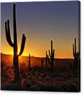 Christmas Morning In Arizona  Canvas Print