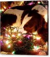 Christmas Spaniel Canvas Print