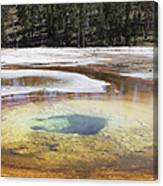 Chromatic Pool Hot Spring, Upper Geyser Canvas Print