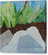 Chromitic Iris Canvas Print
