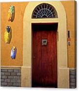 Cicada Door Arles France Canvas Print
