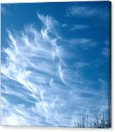 Cirrus Cloud Canvas Print