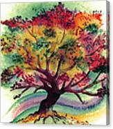 Clad In Color Canvas Print