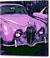 Classic In Pink Canvas Print