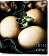 Classy Easter Canvas Print