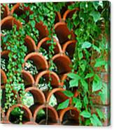 Clay Pattern Wall With Vines Canvas Print