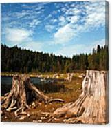 Clear Lake Oregon Canvas Print