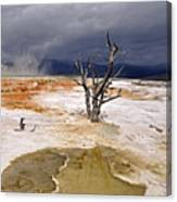 Clearing Storm At Mammoth Hot Springs Canvas Print
