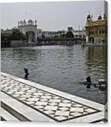 Clearing The Sarovar Inside The Golden Temple Resorvoir Canvas Print