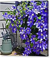 Clematis And Watering Can Canvas Print