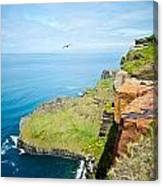 Cliff Of Moher 22 Canvas Print