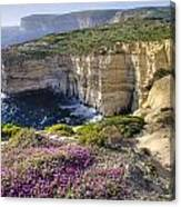 Cliffs Along Ocean With Wildflowers Canvas Print