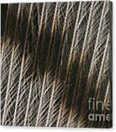 Close-up Of A Turkey Feather Canvas Print