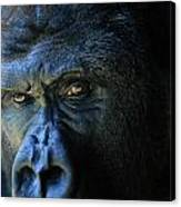 Close View Of A Gorilla Gorilla Gorilla Canvas Print