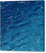 Close View Of The Ocean Shows Canvas Print