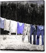 Clothesline  Canvas Print