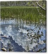 Cloud Reflections Canvas Print