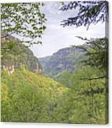 Cloudland Canyon Canvas Print