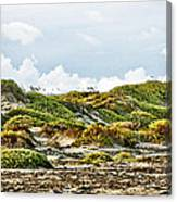 Clouds And Dunes Canvas Print