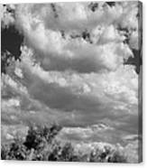 Clouds Rising Bw Palm Springs Canvas Print