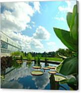 Cloudy Reflections And Lily Pad Companions  Canvas Print