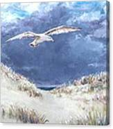 Cloudy With A Chance Of Seagulls Canvas Print