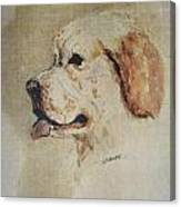 Clumber Spaniel Field Marshal Canvas Print