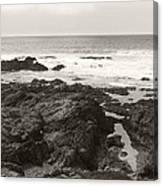 Coastal Tide Canvas Print