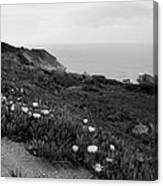 Coastal View Mist - Black And White Canvas Print