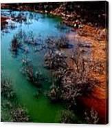 Gobbler Creek Canvas Print