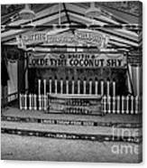 Coconut Shy 2 Canvas Print
