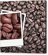 Coffee Beans Polaroid Canvas Print