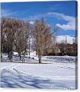 Cold Park Canvas Print