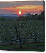 Cold Spring Orchard Canvas Print