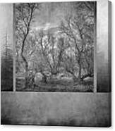 Collage Misty Trees Canvas Print
