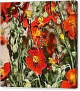Color 82 Canvas Print