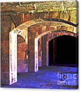 Color Arches Canvas Print