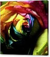 Color Explosion Canvas Print