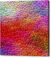 Color Hearts 1c Canvas Print
