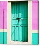 Color Me Pink Canvas Print