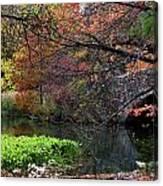 Color Splash In Central Park Canvas Print