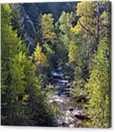 Colorado Left Hand Creek Boulder County Autumn View Canvas Print