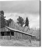 Colorado Rustic Autumn High Country Barn Bw Canvas Print