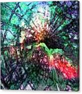 Colorful Abstract Canvas Print