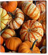 Colorful Gourds Canvas Print