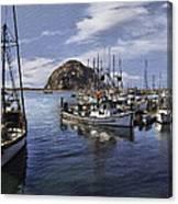 Colorful Morro Harbor Canvas Print