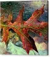 Colorful Oak Canvas Print